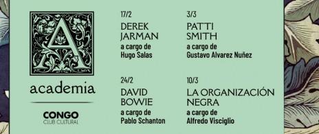Academia - sobre David Bowie